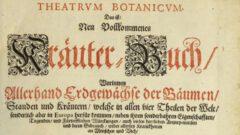 Theatrum Botanicum.