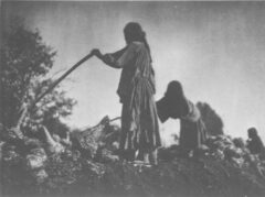 Filling the earth pit. Edward S. Curtis, The North American Indian, 1907.