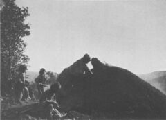 Covered earth pit. Edward S. Curtis, The North American Indian, 1907.