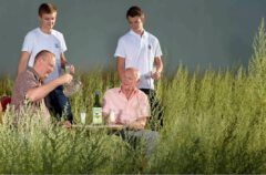 The Guy family at the wormwood harvest in 2013. In the front row François and Pierre Guy (4th and 3rd generation), behind them Pierre and Paul Guy (5th generation).