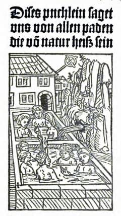 Hans Folz: Dises puchlein saget uns von allen paden die vō natur heisz sein. Nürnberg, 1480.