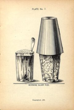 Harry Johnson, 1900, New and Improved Bartender's Manual, page 111 - Morning Glory Fizz.