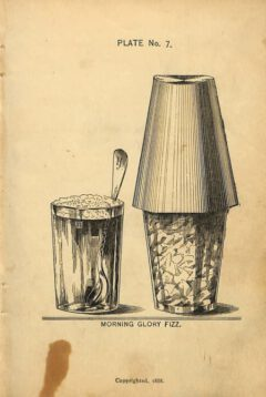 Harry Johnson - New and Improved Illustrated Bartender's Manual, after page 72, plate 7,1888.