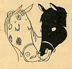 Horse's Neck - 1933 William Guyer - The Merry Mixer - Page 43.
