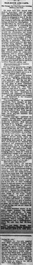 New Ulm Weekly Review, 31. December 1884, Page 1.