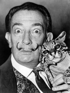 Salvador Dalí in 1965.
