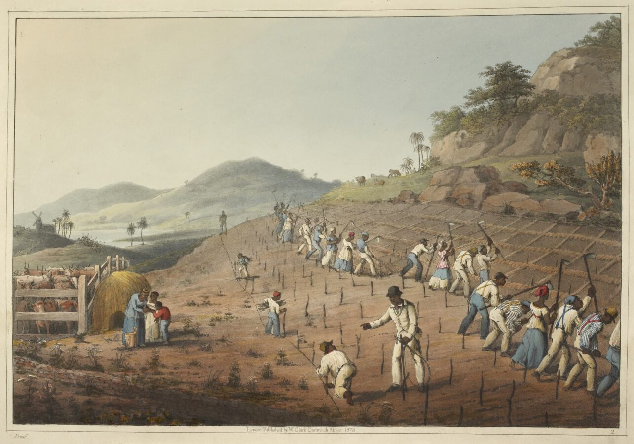 William Clark - Ten Views in the Island of Antigua (1823) - Plate 2: Slaves working the soil, digging the holes and planting the sugar cane.
