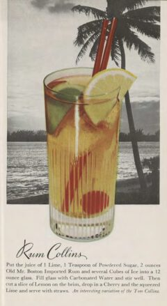 Leo Cotton: Old Mr. Boston Official Bartender's Guide. 1953. After page 112. Rum Collins.