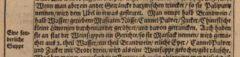 Adam Olearius: Orientalische Reise-Beschreibunge Jürgen Andersen aus Schleßwig. 1669, page 10.