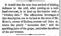 The Brooklyn Daily Eagle, 29. December 1855, page 2.